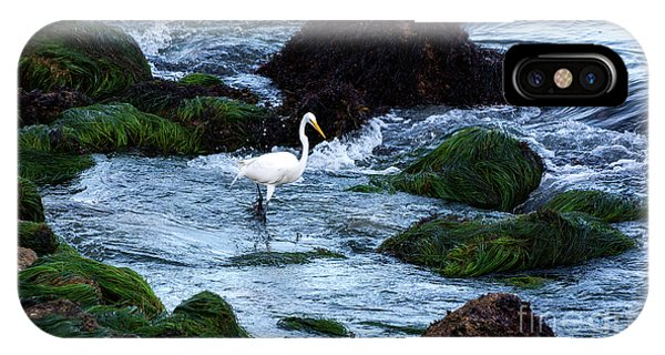 A Great Egret Watches The Incoming Tide IPhone Case