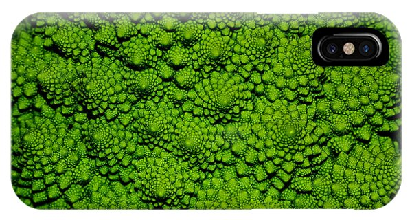 Fractal iPhone X Case - A Green Cabbage Closeup by Ziche77
