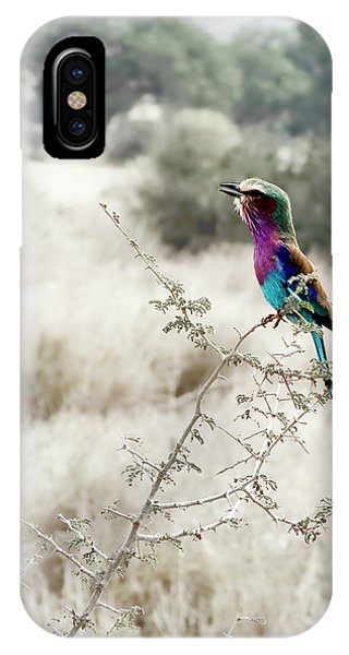A Lilac Breasted Roller Sings, Desaturated IPhone Case