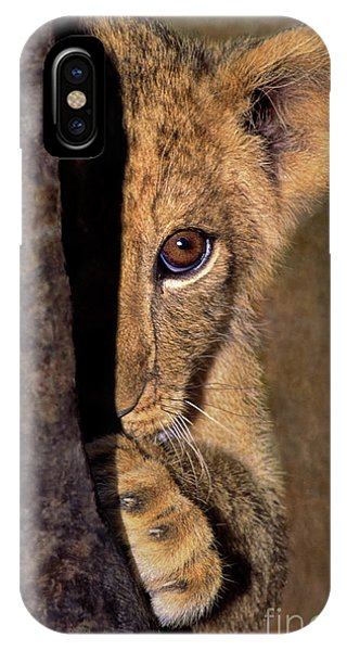 A Lion Cub Plays Hide And Seek Wildlife Rescue IPhone Case