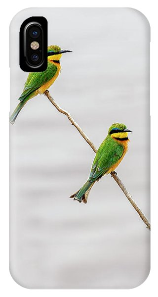 IPhone Case featuring the photograph A Little Bee Eater Couple by Kay Brewer