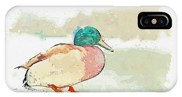 Protein iPhone Case - A Migrating Loon, Oslo, Norway -  Watercolor By Adam Asar by Adam Asar
