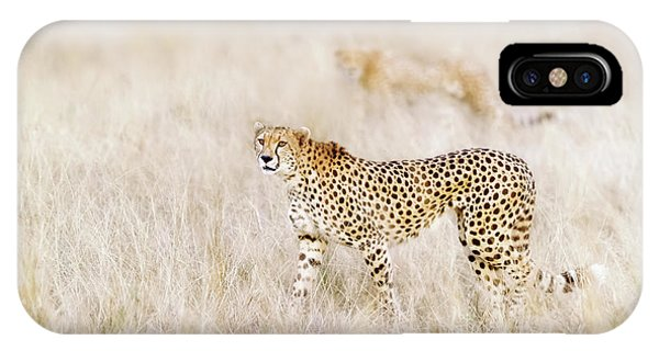 iPhone Case - A Pair Of Cheetahs Move Steathily Through The Long Grass Of The  by Jane Rix