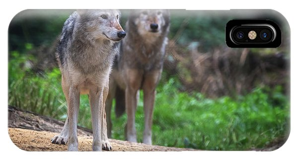 iPhone Case - A Pair Of Mackenzie Valley Wolves by Jane Rix