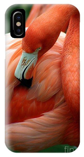 Wings iPhone Case - A Pink Flamingo Grooming Herself At Sea by Bo Vilmos Widerberg