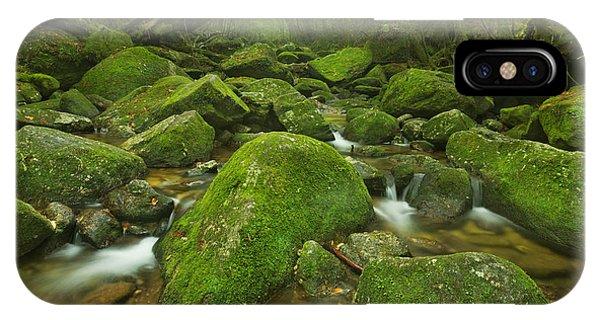 Lush iPhone Case - A River Through Lush Rainforest Along by Sara Winter
