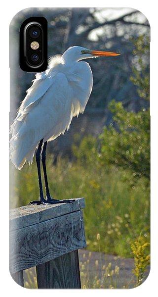 A Ruffled Snowy Egret IPhone Case