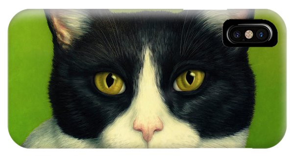 Popular iPhone Case - A Serious Cat by James W Johnson