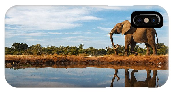 Grey Skies iPhone Case - A Single Elephant Is Reflected On The by Mike Dexter