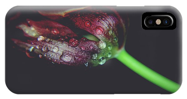 Black Tulip iPhone X Case - A Story Of Love by Laurie Search