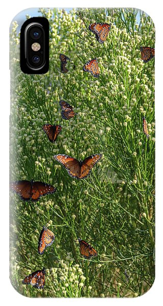 IPhone Case featuring the photograph A Swarm Of Queens by Gaelyn Olmsted