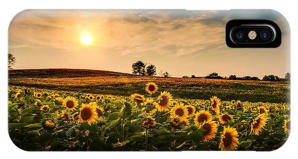 Orange Color iPhone Case - A View Of A Sunflower Field In Kansas by Tommybrison