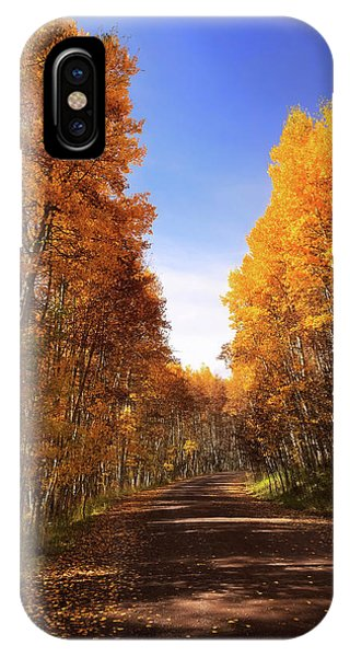 A Walk Down Memory Lane IPhone Case