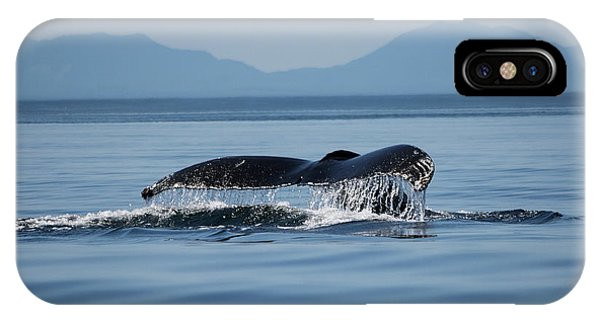 IPhone Case featuring the photograph A Whale Of A Tail - Wildlife Art by Jordan Blackstone