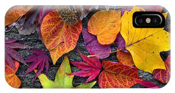 Lush iPhone Case - Abstract Background Of Autumn Leaves by Artens