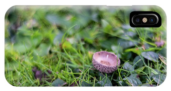IPhone Case featuring the photograph Acorn Cup On Grass by Scott Lyons