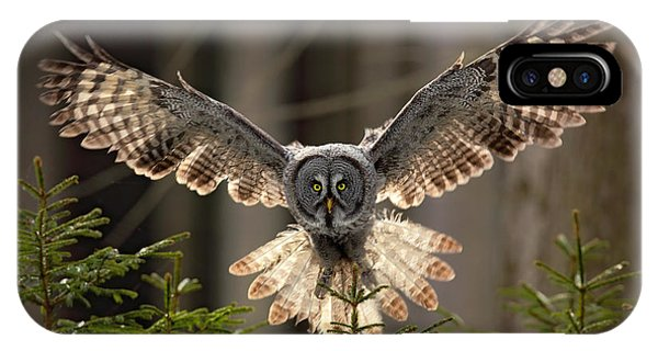 Flight iPhone Case - Action Scene From The Forest With Owl by Ondrej Prosicky