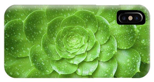 Aenomium 3916 IPhone Case