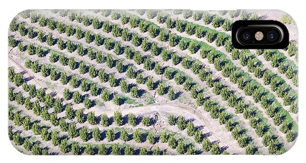 United States iPhone Case - Aerial View Of Orange Grove In Ventura by Joseph Sohm