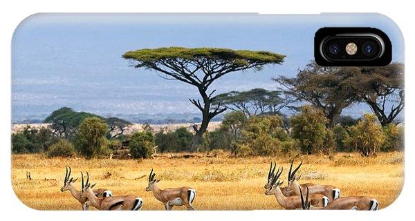 African Landscape With Gazelles Phone Case by Oleg Znamenskiy