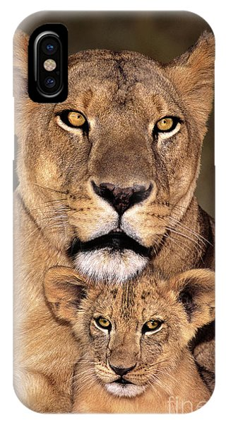 African Lions Parenthood Wildlife Rescue IPhone Case