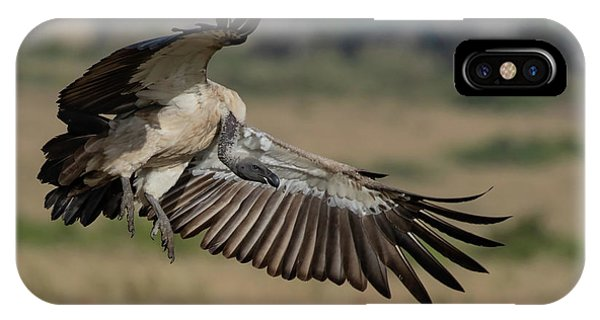 African White-backed Vulture IPhone Case