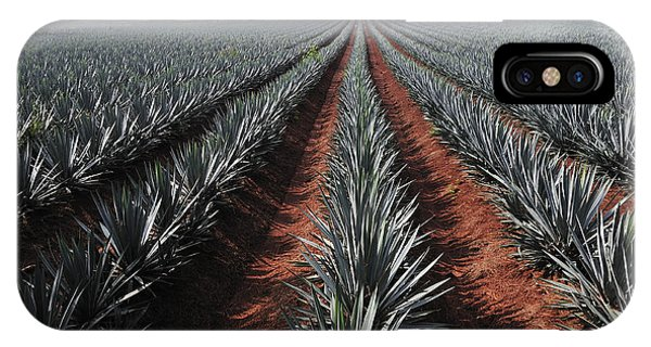 Cutting iPhone Case - Agave Field For Tequila Production by T Photography