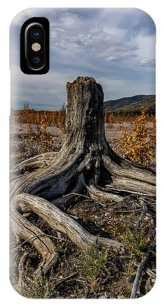 IPhone Case featuring the photograph Age-old Stump by Fred Denner