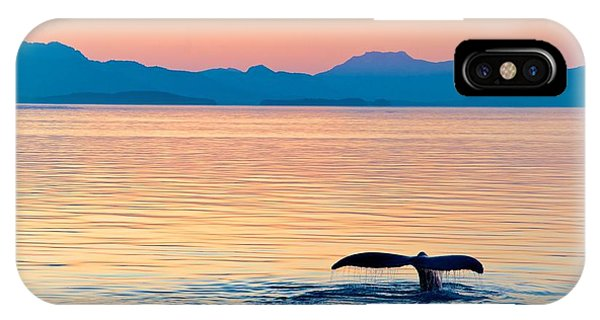 Fins iPhone Case - Alaska Whale Tail Sunset by Tonyzhao120