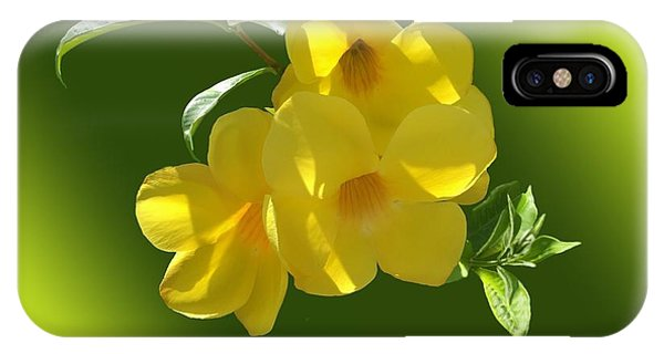 Yellow Trumpet iPhone Case - Allamanda Splendor by Gary F Richards
