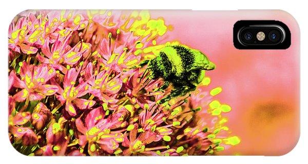 Allium With Bee 1 IPhone Case