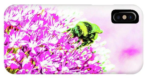 Allium With Bee 3 IPhone Case