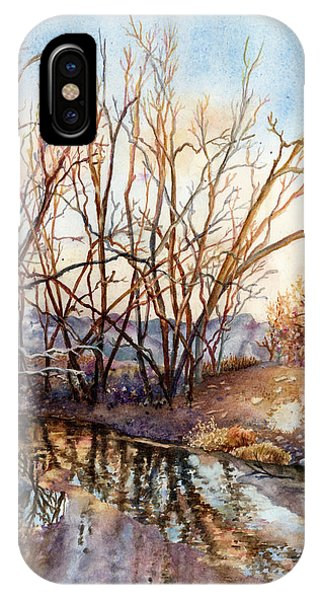 Cold iPhone Case - Along Boulder Creek by Anne Gifford