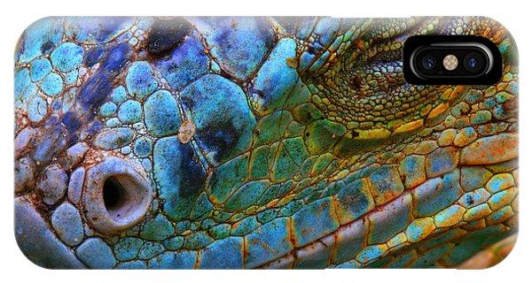 Horizontal iPhone Case - Amazing Iguana Specimen Displaying A by Tessarthetegu