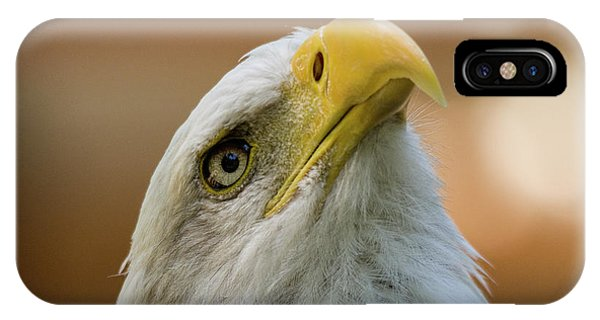 IPhone Case featuring the photograph Amazing - Wildlife Art by Jordan Blackstone