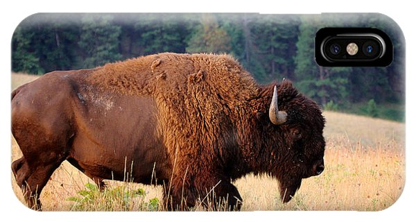 Oklahoma iPhone Case - American Bison Buffalo Side Profile by Steve Boice