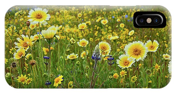iPhone Case - Among The Wildflowers by Kathy Yates