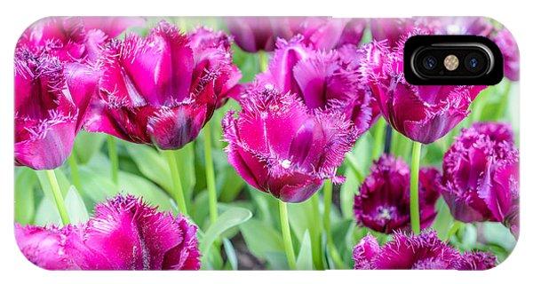 Object iPhone Case - Amsterdam Flowers by Gmlykin