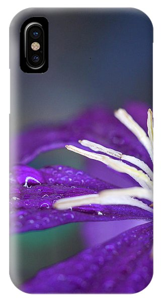 IPhone Case featuring the photograph Ancient Joy by Michelle Wermuth