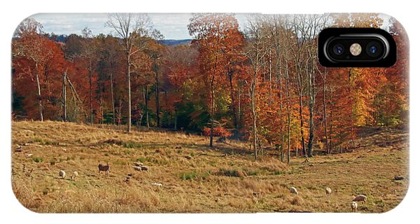 IPhone Case featuring the photograph Animals Grazing On A Fall Day by Angela Murdock