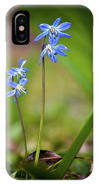 IPhone Case featuring the photograph Animated by Michelle Wermuth