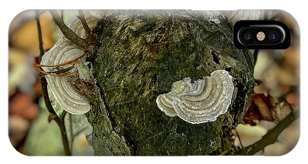 Another Fungus IPhone Case