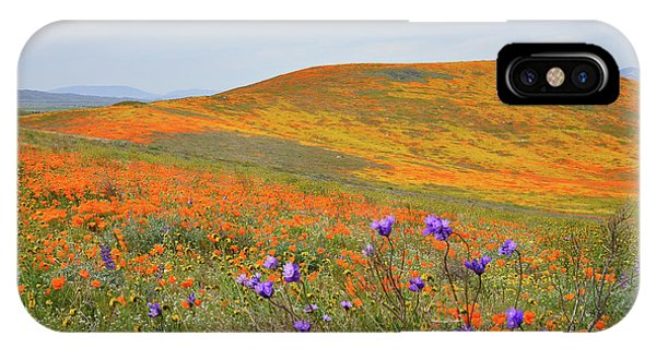 iPhone Case - Antelope Valley Superbloom by Kathy Yates