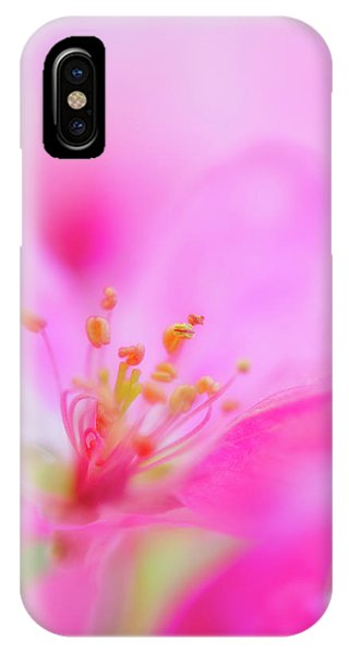 IPhone Case featuring the photograph Apple Blossom 1 by Leland D Howard