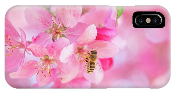 IPhone Case featuring the photograph Apple Blossom 2 by Leland D Howard