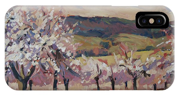 Apple Blossom Geuldal IPhone Case