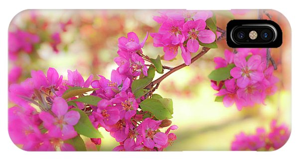 IPhone Case featuring the photograph Apple Blossoms B by Leland D Howard