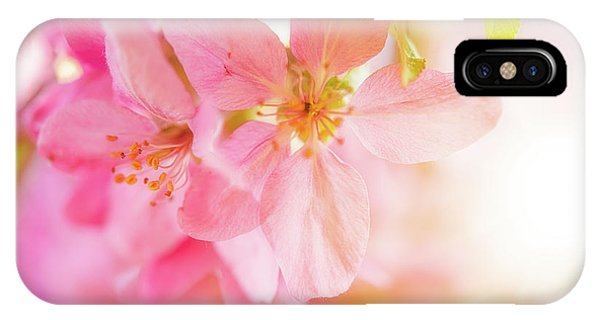 IPhone Case featuring the photograph Apple Blossoms Bright Glow by Leland D Howard