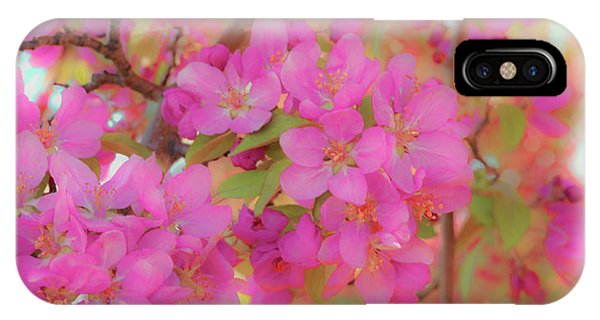 Apple Blossoms C IPhone Case