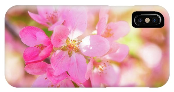 IPhone Case featuring the photograph Apple Blossoms Cheerful Glow by Leland D Howard